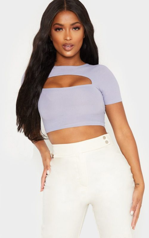 Shape Dusty Blue Ribbed Cut Out Short Sleeve Crop Top