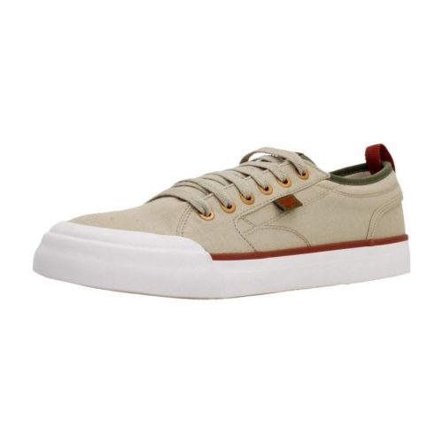 DC Shoes ADYS300275 men's Shoes (Trainers) in Brown