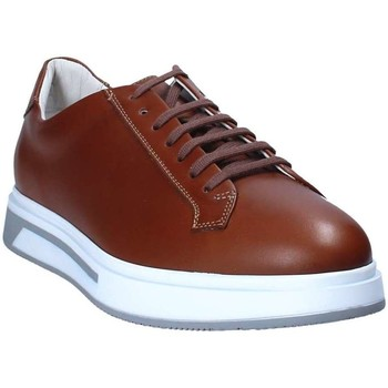Soldini 20455 V men's Shoes (Trainers) in Brown